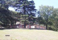Tolentino v118 (dettagli) a 62029 Tolentino MC, Italia per Contatta l'agenzia